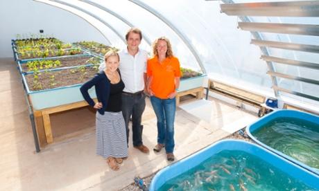 イギリスで初のアクアポニックス温室が誕生。テレビ司会者Kate Humbleの農場「Humble by Nature」が建設