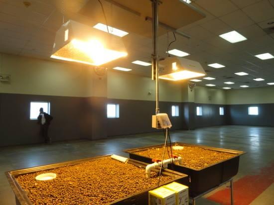 コロラド州の刑務所「Denver Country Jail」にてアクアポニックスシステムが完成。担当は「Colorado Aquaponics」、受刑者の社会復帰をサポート