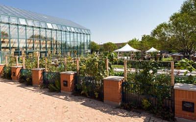 イリノイ州シカゴで多目的施設「オグデン農場」を設立。アクアポニックスシステムや有機農業を活用し、社会問題の解決へ